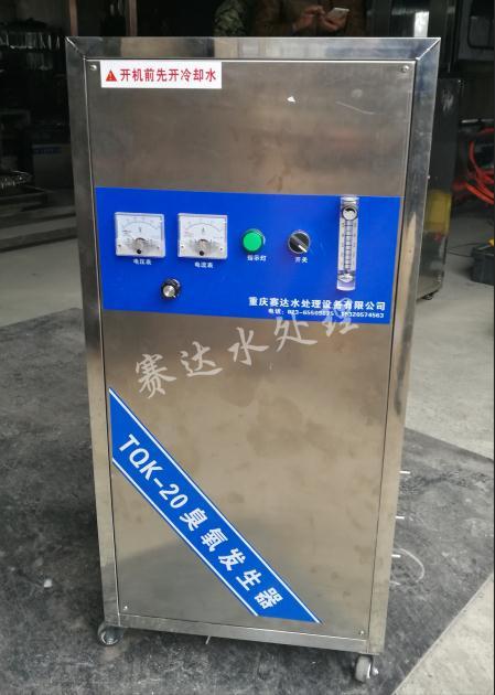 20g一体式臭氧发生器  氧气型臭氧机